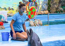 Girl, Trainer With  Dolphins.