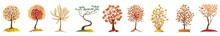 Autumn Trees Set. Four Seasons - Spring, Summer, Autumn, Winter. Art Tree Beautiful For Your Design