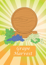 Background For Grape Harvest - Wooden Barrel With Grape - Vector