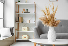 Vase With Pampas Grass On Table In Living Room