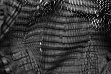 Foto Abstracto De Papel Troquelado En Blanco Y Negro
