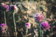 Purple Flowers Against A Brown-green Background. Blooming Thistle In A Dark Morning Forest. Digital Watercolor Painting. Modern Art