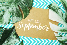 Hello September Typography Text On Paper Card With Monstera Leaves