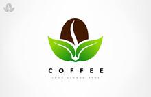 Coffee Bean And Leaf Logo Vector Design.