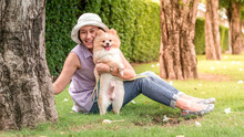 Asia Women Sitting On Grass Under A Tree In The Garden With Lovely Puppy Pomeranian Dog On Travel Tip