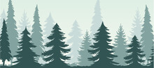 Fir Tree Silhouette With Tall Trunk And Branches As Misty Forest Horizontal Backdrop Vector Illustration