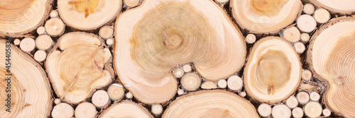 Fotografie, Obraz wooden background with texture of many tree trunks