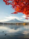 Fototapeta Nowy Jork - Mount Fuji and Lake Kawaguchi in autumn, Yamanashi Prefecture, Japan