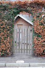 Kerbside Wooden Gate In Leafy Hedge With Wooden Building In Background
