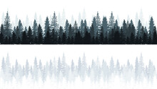 Winter Forest Of Snowy Fir Trees Silhouette. Forest Silhouette Landscape. Coniferous Forest Panorama. Vector Illustration