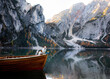 dog Jack Russell Terrier in boat. Mountain Lake Braies. boat station. Morning landscape with a pet