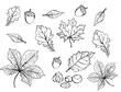 plik wektorowy, papier, bazgrać, ilustracja, szkolne, szkic, losowanie, framuga, komiks, edukacja, projekt, sztuka, serca, deseń, dekoracja, symbol, dłonie, brulion, icony, kwiat, bisnes, kreska, boże