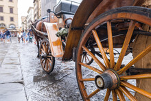 Horse-drawn Carriage Close-up In Florence
