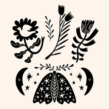 Night Moth Cute Illustration Art Print, Ornate Butterfly.