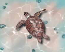 Big Sea Turtle Watercolor Painting. Illustration Realistic