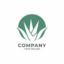 Creative  Agave Logo Design Vector