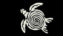 Black & White Turtle Picture Artwork.