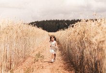 A Little Girl Runs Through A Wheat Field. The Girl Has Fun And Laughs With Delight. Field With Ripe Ears Of Corn At Sunset.