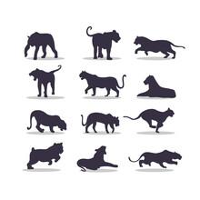 Tiger Silhouette Vector Illustration Design