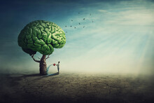 Surreal Brain Tree In A Desolate Land And A Determined Person Watering It Using A Sprinkling Can. Man Splashes The Green Shrub Using A Water Pot, Taking Care Of Mental Health. Human Mind Concept