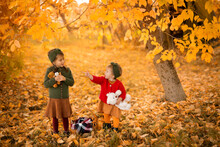 Two Sisters Are Standing With Plush Stuffed Toys In The Park On An Autumn Day. A Little Girl Points To Her Sister With A Finger To The Side. Bright Orange Foliage Of Trees. A Warm October Day