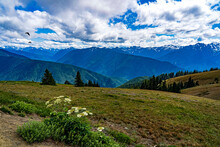 A View Of The Snow Capped Mountains From Hurricane Ridge In Olympic National Park