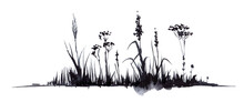 Hand Drawn Watercolor Illustration. Lower Border Decorative Element. Silhouette Dry Black Stems Umbrella Plants, Small Flowers Ears Of Grass. Simple Light Sketch Drawing. Isolated On White Background