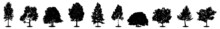Tree Silhouette Vector. Isolated Forest Trees On White Background. Silhouette, Illustration, Design, Nature, Vector, Forest, Plant, Season, Tree, Biology, Black And White, Detailed Tree Silhouettes