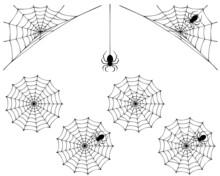 蜘蛛の巣と蜘蛛のシルエット