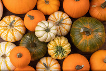 Many Various Pumpkins Background