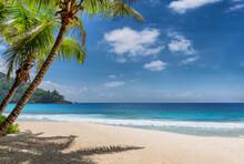 Paradise Tropical Beach. Sandy Beach With Palm And Tropical Sea. Summer Vacation And Tropical Beach Concept.