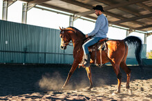 Man Riding Horse In Paddock On Sunny Day