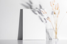 White Canvas Mockup With Shadow And Glass Vase With Lagurus On White Table