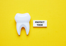 A Picture Of Fake Tooth And Wooden Block With The Word Protect Them.