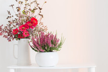 Heather In Flowerpot And  Bouquet In Vase On White Background