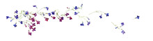 Watercolor Composition Of Flying Away Lobelia Flowers