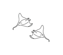 Vector Isolated Two Stingrays Torpedo Line Drawing Set. Contour Colorless Stingray Graphic Outline Sketch.