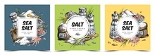 Set Of Three Colored Vector Hand Drawn Illustration. Backgrounds With Square Labels For Brand Or Text With Items Of Salt