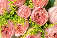 Pink Roses And Small Yellow Flowers, Background