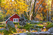 Red Cottages In A Garden With Rocks And Autumn Leaves