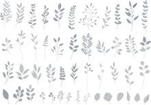 シルバーのリーフ・植物のセット 線画なし ベクター素材