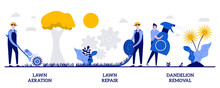Lawn Aeration And Repair, Dandelion Removal Concept With Tiny People. Lawn Maintenance Vector Illustration Set. Overseeding Service, Grass Fertilization, Thatch And Moss, Soil Compaction Metaphor