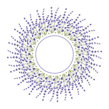 Round Frame Made Of Lavender Twigs. An Empty Space For The Text. Postcard. A Design Element. Vector.