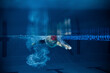 Leinwandbild Motiv Underwater view of professional male swimmer in motion and action during training at pool, indoors. Healthy lifestyle, power, energy, sports movement concept