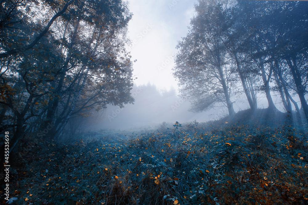 Jesienny mglisty krajobraz w salonie