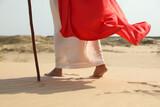 Jesus Christ walking in desert, closeup view