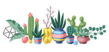 Background With Cactuses And Succulents. Decorative Spiky Flowering Cacti And Plants In Flowerpots.