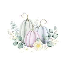 Pastel Pumpkins And Eucalyptus Arrangement Isolated On White Background.Perfect Graphic For Thanksgiving Day, Halloween, Greeting Cards, Photos, Posters, Quotes, Scrapbooking And More.