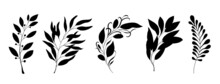 Set Of Decorative Leaves And Branches Silhouette. Various Vector Branches Of Beautiful Leaves. Simple Stencils. Hand-drawn Illustration.