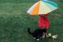 Girl Holding Umbrella Beside Cat And Ducks Standing On Green Field